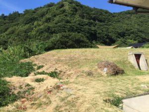 皆月青少年旅行村キャンプ場 (4)