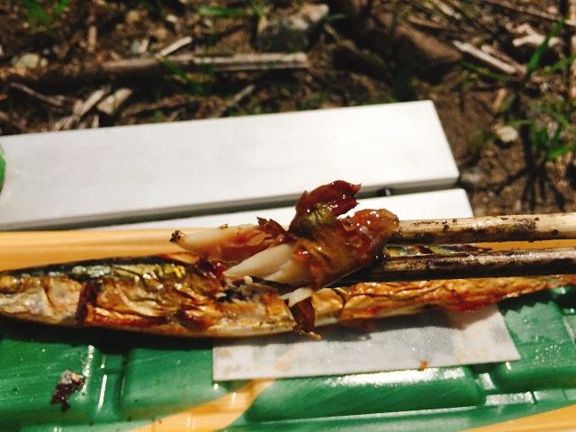 秋の秋刀魚デイキャンプ (18)