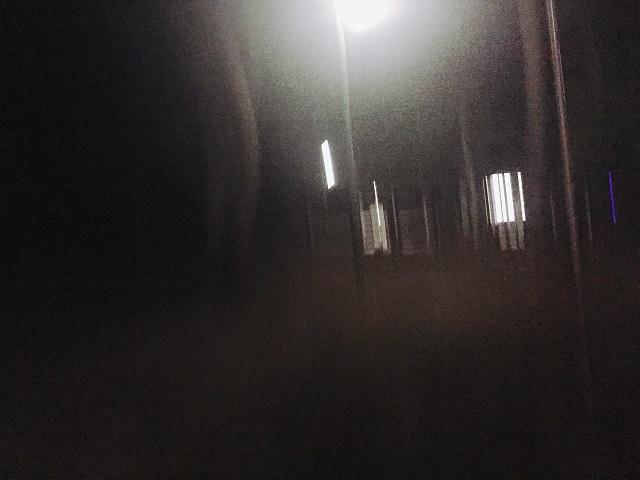 園家山キャンプ場でソロキャンプ (28)