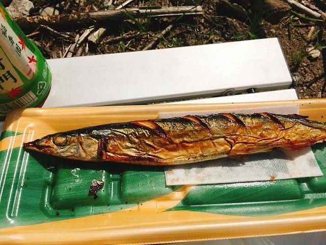 秋の秋刀魚デイキャンプ (17)