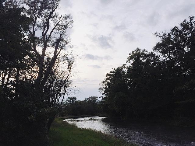 川辺サイト