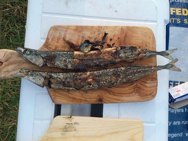 五位キャンプ場で食べた秋刀魚