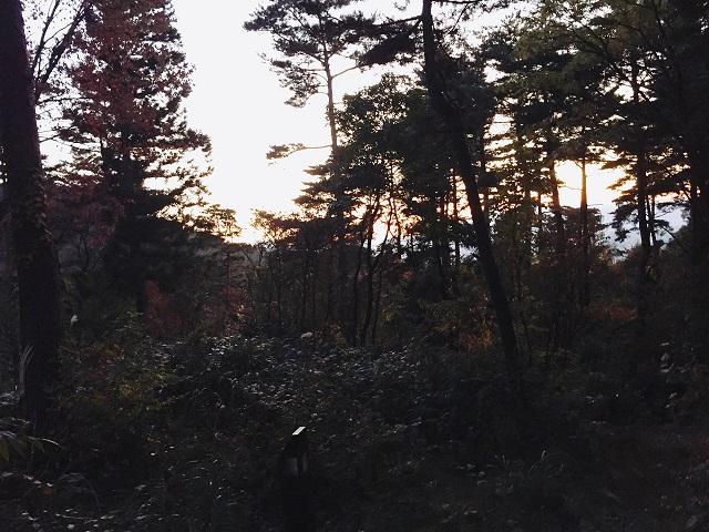 閑乗寺キャンプ場で秋キャンプ (4)