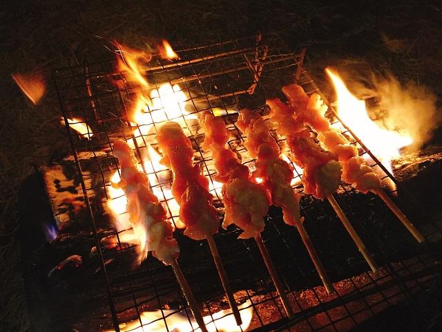 焚き火で焼き鳥!1