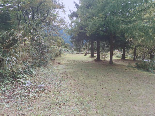 山道のソロラーメンツーリング (11)