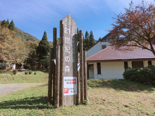 杉ヶ平キャンプ場 (11)