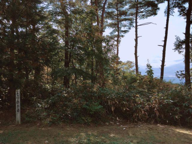 レンコンテントでデュオキャンプ (4)