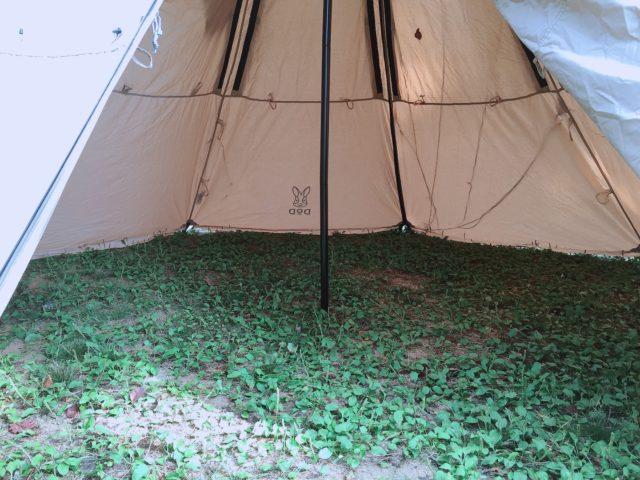レンコンテントでデュオキャンプ (8)
