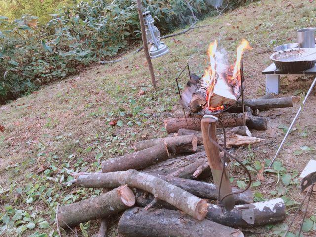 秋のレンコンテントとピコグリル