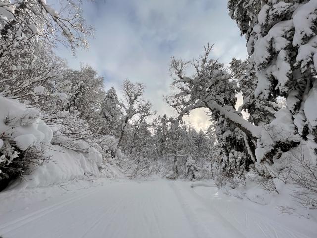 雪山の中1