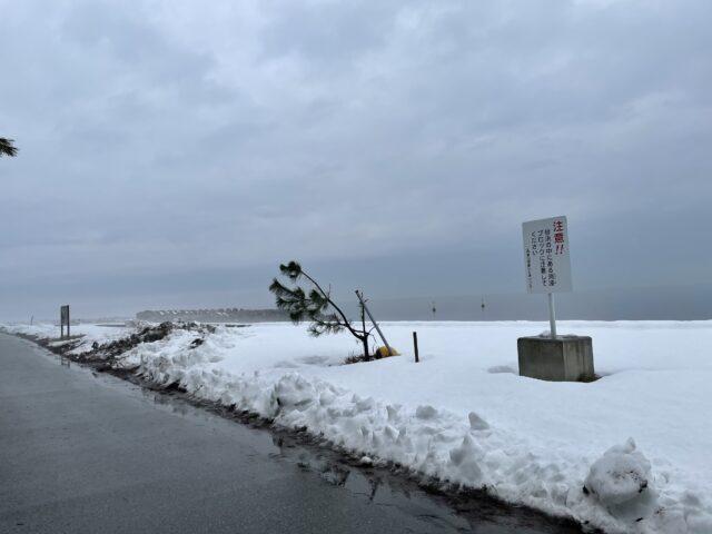 初の雪中ソロキャンプ (13)