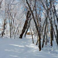 冬キャンプのハンモック泊で快適に眠る為に必須な3つのアイテム!?