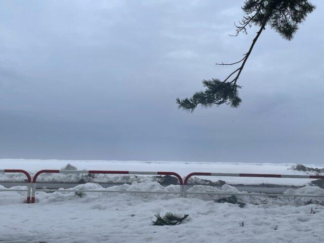 初の雪中ソロキャンプ (21)