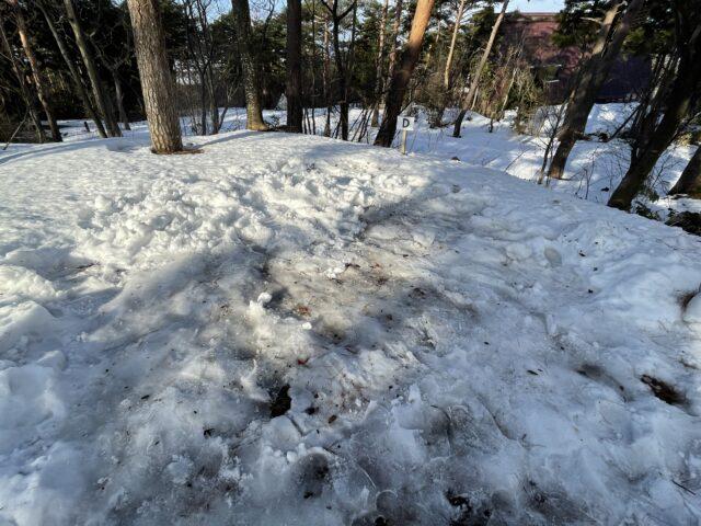 2回目の雪中キャンプ (27)