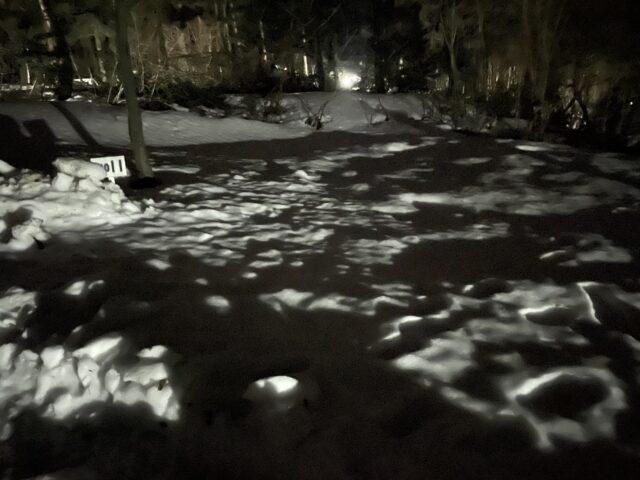 キャンプ連泊初日 (42)
