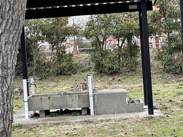 グリーンパークおおしまキャンプ場 (14)