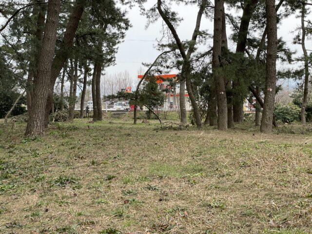 グリーンパークおおしまキャンプ場 (10)