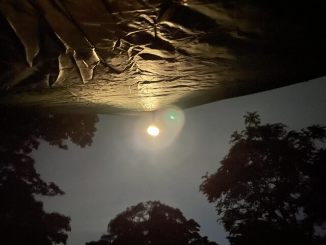 DDハンモックソロキャンプ夜 (16)