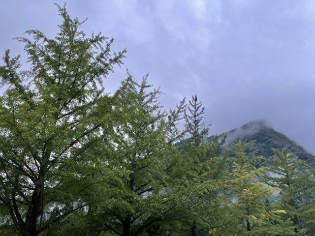相倉キャンプ場でソロキャンプ (14)