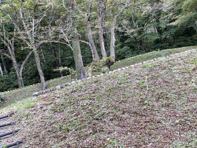 相倉キャンプ場でソロキャンプ (5)