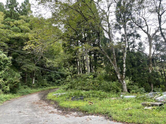 相倉キャンプ場でソロキャンプ (2)